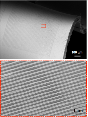 ZnO Nanowire Structures to Flexible Substrates