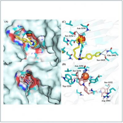 Novel Pharmaceutical Compounds Based on Tumor-Selective KDM Inhibitors